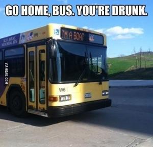 Go home bus  you re drunk