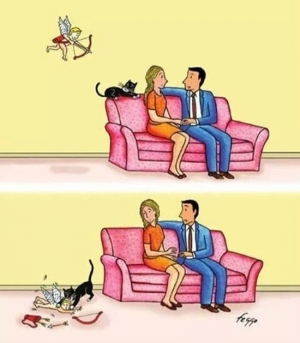 So this is why people with cats never find true love